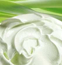leave-in-conditioner-new.jpg