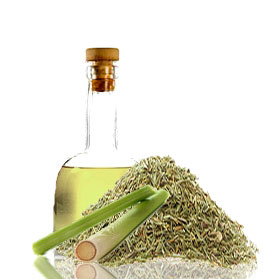 lemongrass-oil-1a.jpg
