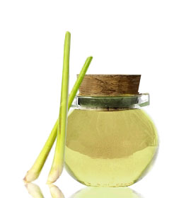 lemongrass-oil-2a.jpg
