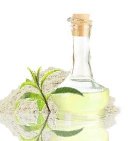 oil-soft-green-4a.jpg