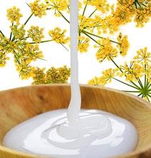 proteins-and-vitamins-hair-treatment-new-1-.jpg