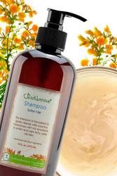 Psoriasis Soften Hair Shampoo #Psoriasis Shampoo#