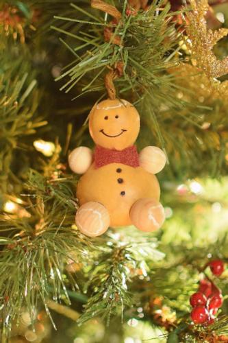 Meadowbrooke Gourds- Winter Gingerbread Man Ornament