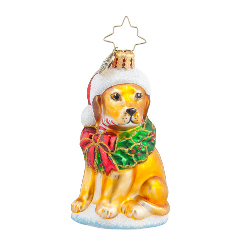 Christopher Radko Labrador Lucky Golden Gem Christmas Ornament