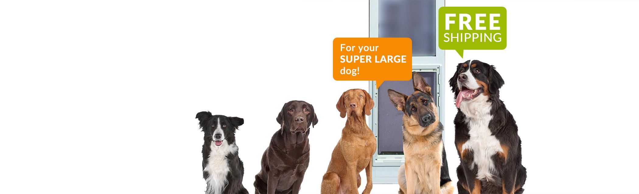 Ideal Pet Products Dog Doors Cat Doors Pet Accessories And