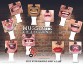 Mug Shotz 2017 Collection 2
