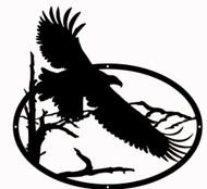 Flying Eagle Oval