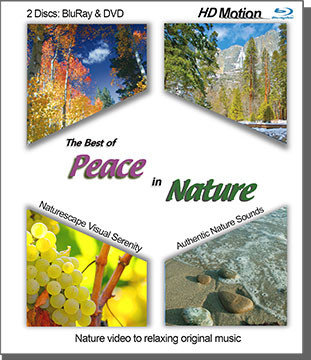 This relaxing nature film sampler includes favorite excerpts from our Telly Award winning films: Peace in the Sierra, Peace by the Sea, Peace in December, Peace in Wine Country, Peace in the Wild and more. Soothing scenic views and soft original music take your mind and spirit on a virtual vacation; the perfect background for your relaxation time. A great introduction to our 'PeacefulNature' series of relaxation films. The film and music are produced by award-winning composer/videographer, Richard Klender. Nature sounds are recorded on-site and tastefully mixed into the final serenity soundtrack to put you right in each scene. Now available via VimeoOnDemand, BluRay and DVD at Songtracker.com. Oooh...Ahhh...Relax...  Naturescape™ Visual Serenity: Richard has written and produced soundtracks for his entire life (see bio) and began dovetailing his instrumental music with his nature footage over the last 15 years. His films are also used extensively in the medical field, in waiting rooms and hospitals, to promote relaxation and healing for those suffering from diseases and anxiety. During these times, most viewers and listeners benefit from the serenity offered herein. Take it all in with a deep breath, and simply relax...