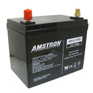 Amstron 12V / 75Ah Deep Cycle Battery with SAE Post (BCI Group 24)