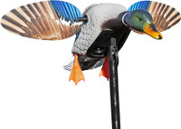 MOJO ELITE SERIES MINI MALLARD DRAKE DECOY