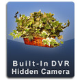 Silk Plant DVR Series Hidden Nanny Cam  -  PLANT-DVR