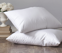 St. Geneve Lajord Down Pillow