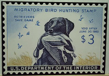 """Photo of  FEDERAL DUCK HUNTING STAMP 1960 IS THE ONLY STAMP WITH A DOG, """"RETRIEVERS SAVE GAME"""""""