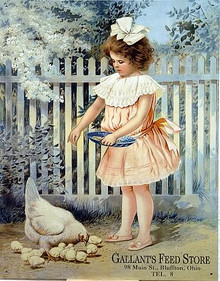 GALLANTS FEED STORE SIGN AD SHOWS LITTLE GIRL FEEDING A CHICKEN AND CHICKS, PICKET FENCE IN THE BACKGROUND VERY CUTE SIGN WARM COLORS GREAT DETAILS