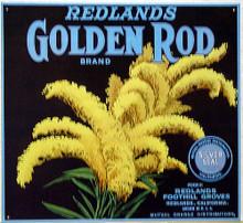 GOLDEN ROD SIGN, PICTURE OF GOLDEN ROD  REDLANDS GOLDEN ROD BRANS  DEEP RICH COLORS & GRAPHICS