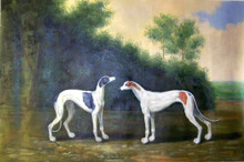 GREYHOUNDS OIL PAINTING OIL PAINTING