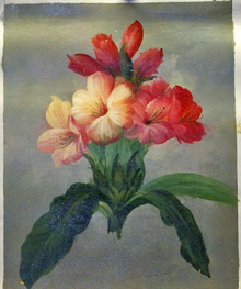 PINK FLOWERS OIL PAINTING