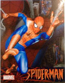 SPIDERMAN SUPER HERO SIGN