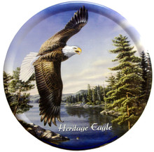 Magnificent Eagle with great detail and rich outdoor colors.