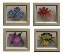 """SET OF FOUR FLOWER PICTURES EACH MEASURING 6"""" X 5"""" X 1/2"""" THE FLOWERS ARE PAINTED ON PLEXY-GLASS WITH A WOOD FRAME PAINTINGS OF: CHICORY, COSMOS, JOHNNY-JUMP-UP, WILD GERANIUM"""