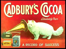 Photo of CADBURY COCOA CAT RICH ENAMEL FINISH