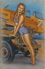 CAN I HITCH A RIDE JEEP  NOSE ART  AIR FORCE VINTAGE METAL SIGN S/O
