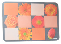 Clear Placemat Orange Theme S/6