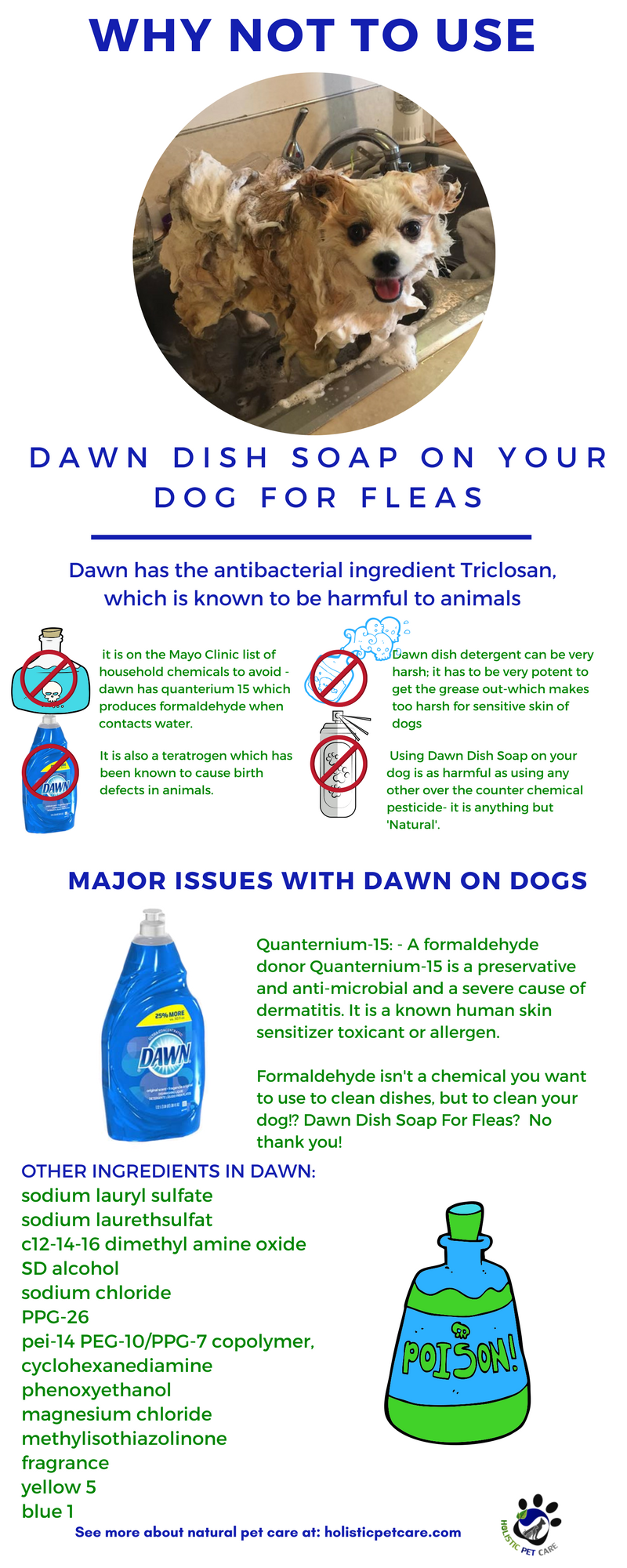 Is dawn dish soap good for fleas