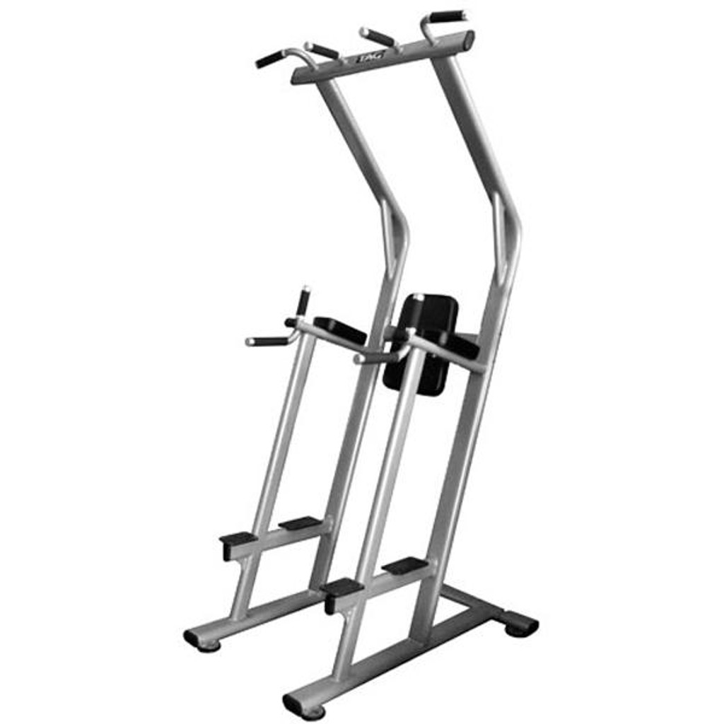 TAG Fitness Commercial VKR Chin Dip Station