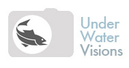 uwv-logo.jpg