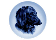 Dachshund (Long Hair) Face Danish Blue Dog Plate