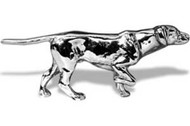 English Pointer Hood Ornament