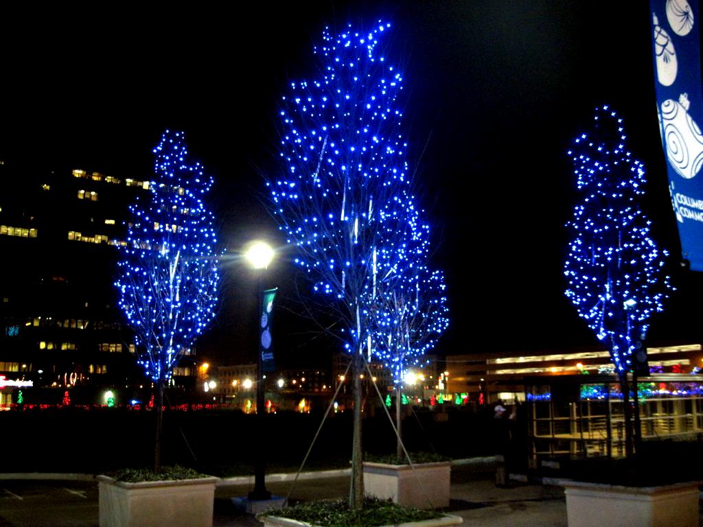 2011-12-30-08.01.07.jpg