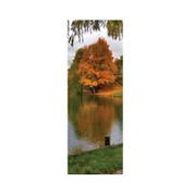 Fall Lake Banner