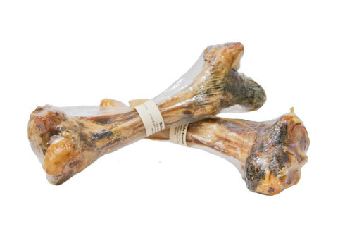 Buffalo Femur Bone