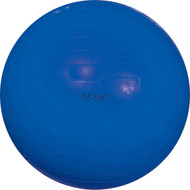 "Gymnic 38"" Ball - 95 cm Blue"