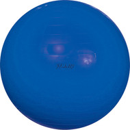"Gymnic 26"" Ball - 65 cm Blue"