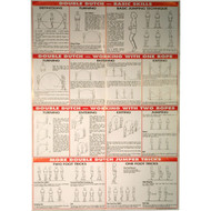 Double dutch wall chart