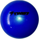 2 lb. Soft Weighted Fitness Ball