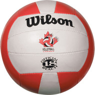 Wilson replica beach practice ball