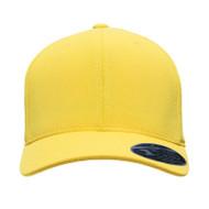 Flexfit Adult Cool & Dry Mini Pique Performance Cap (AS-ATB100)