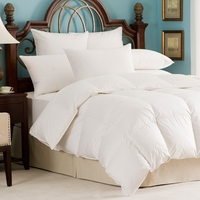 Andesia 650 Fill Power Hungarian White Goose Down All Year Comforter - Twin