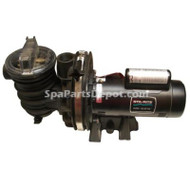 Discontinued STA-RITE DURA-GLAS 2 SPEED POOL / SPA PUMP