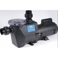 Waterway Champion 1-Sp 2.5 hp Pump - 11-0011