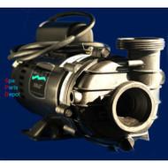 Master Spas Sta-Rite Spa Pump - DJAYHB-0151M X321645