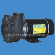 "Waterway Pump 2-speed, Executive Series 48 Frame - 2hp, 220V 2"" or 2.5"
