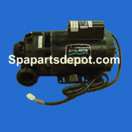 Master Spas 4.5hp, 2spd, 56 Frame Sta-Rite/ Pentair - X321180 / 321180