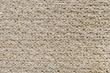 JUNZI-SNOW LEOPARD 11005