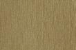 BAJADA-FOOL'S GOLD 11472