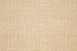 CARMEN CHENILLE-PLANTAIN 11525